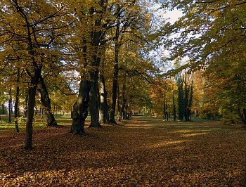 Josefovský podzim