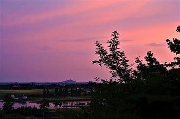Růžový večer