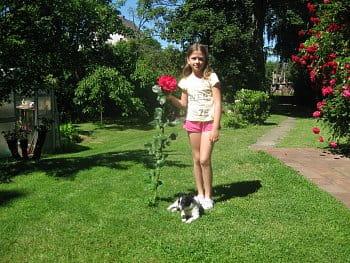 Barunka a růže