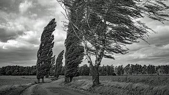 Ve větru