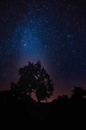 Hvězdný půvab