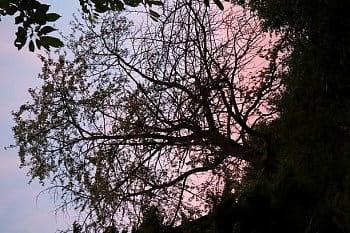 Harmonie přírody