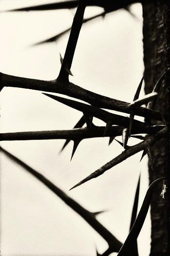 Křížemkrážem
