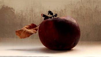 Jablková
