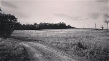 Un camino en blanco y negro