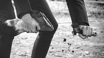 Připrav si svého koně