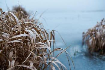 Na zamrzlé přehradě