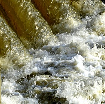 voda je žível