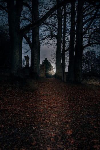 Cesta na hřbitov