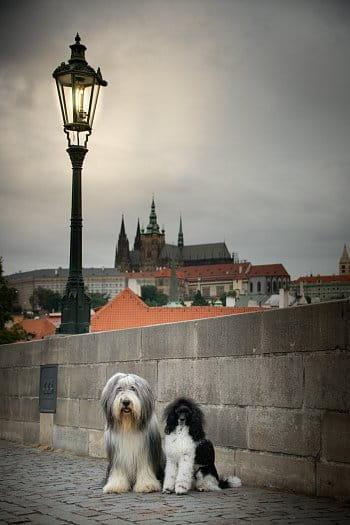 Tajemná Praha