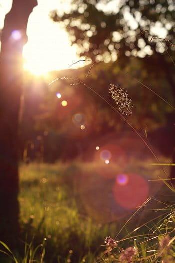 Západ letního slunce