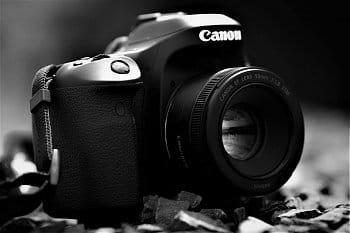 Eye Of Photographer