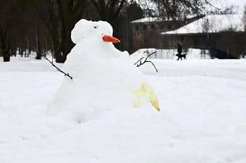 Sněhulákova potupa