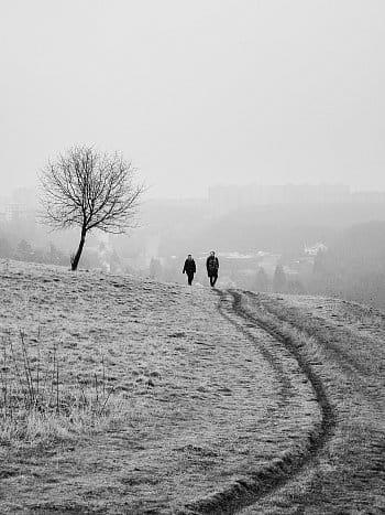 Mráz a mlha na Prokopským údolím