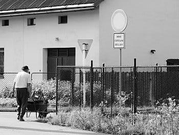 Dopravní obsluha