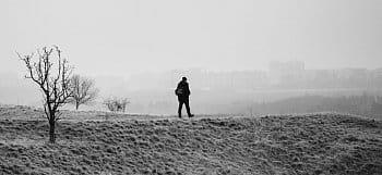 Mráz a mlha na Prokopským údolím II