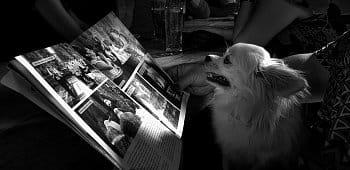 Vášnivý čtenář