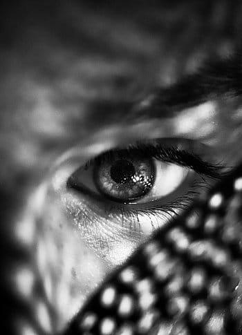 Pohled do neznáma