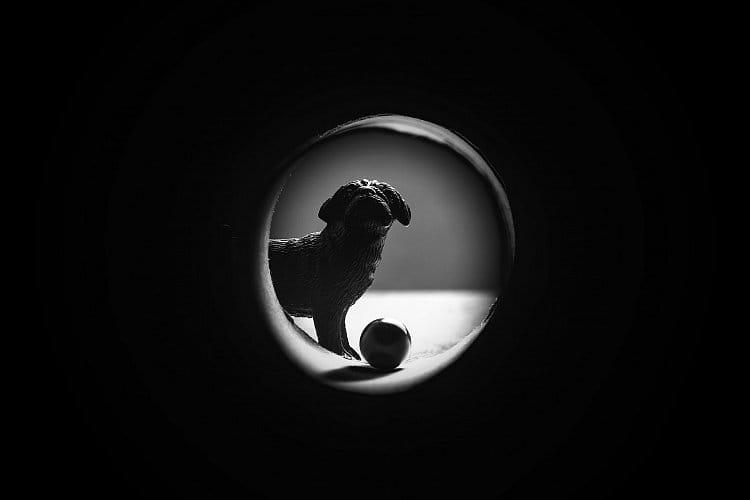 Hafík a míček v tunelu