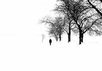Cesta do bílé tmy