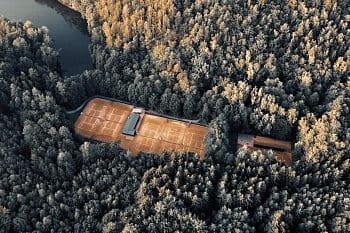Dvorce v lese
