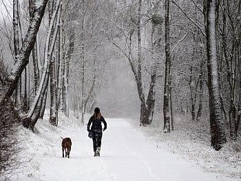 Procházka veskrze zimní