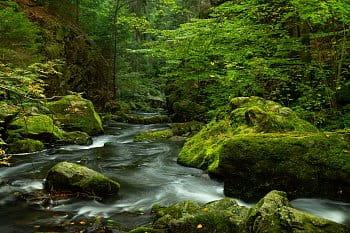 Údolí řeky Doubravy u Chotěboře